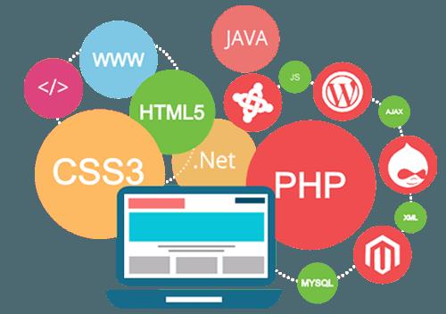 110-seo-friendly-web-development-company-rankwheel